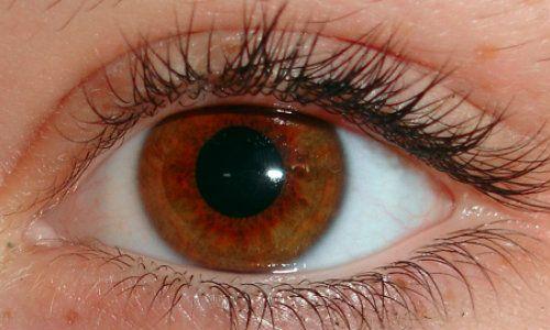 tratament articular în ochi