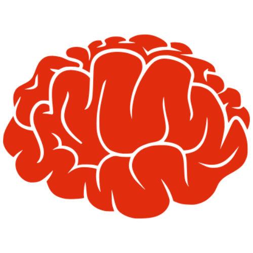 Injectarea de celule stem in creier, posibil tratament pentru victimele accidentelor vasculare cerebrale
