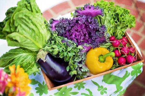 Importanta nutritiei in contracararea efectelor stresului - studiu