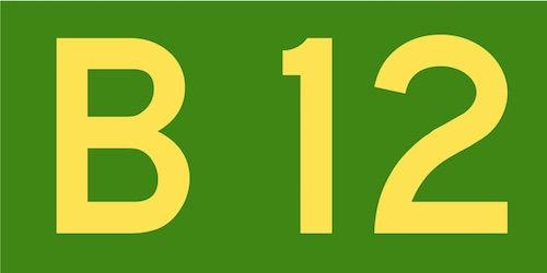 Lipsa de vitamina B12. Cauze, simptome si tratament