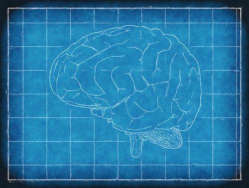 O noua speranta pentru persoanele ce sufera de boli cerebrale fatale