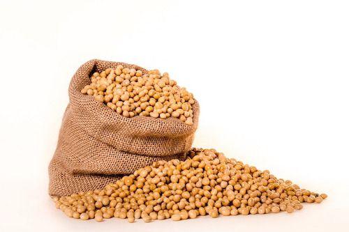 Consumul de soia, benefic pentru persoanele care au supravietuit cancerului mamar