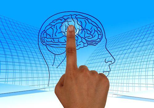 Ce se intampla in creier dupa antrenamentul sportiv