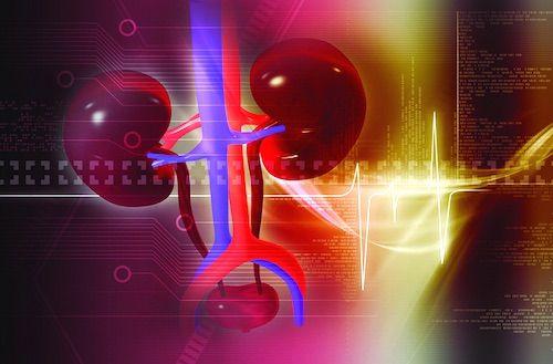 VIDEO Boala cronica de rinichi intr-o abordare multidisciplinara. Factori de risc, simptome si tratament